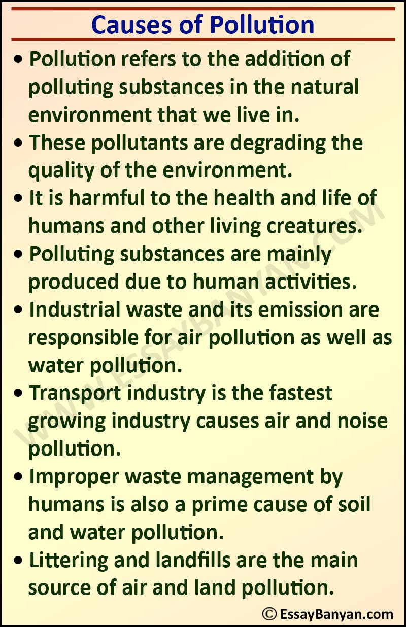 Essay on Causes of Pollution