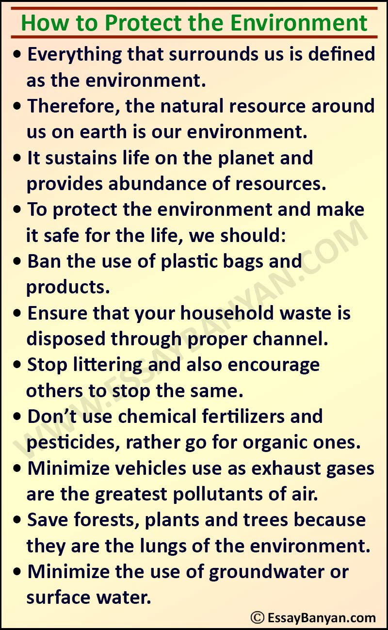 Essay on How to Protect the Environment