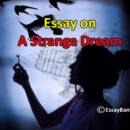 Stange Dream