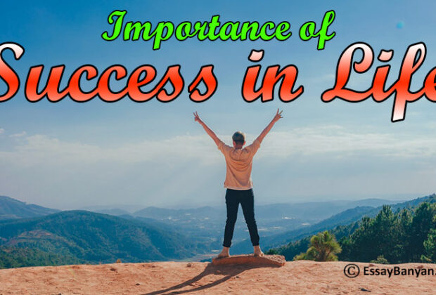 Importance of Success in Life